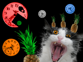 clock.cat.fruit by ididntwantthis