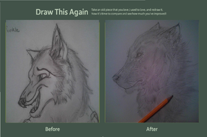 Draw this again-realistic wolf by Jib-Jab