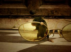 New Point of View by Lemmy-X
