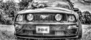 Mustang GT Mariage 01 by KIKIphotolove