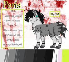 | Paris 2014 Reference Sheet| by UltraViolentRainbows