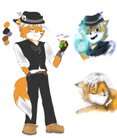 Introducing: Flynn the Fox. by LilRedGummie
