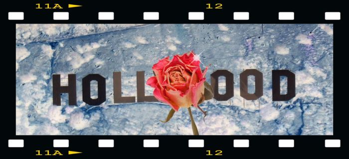 Hollywood Rose by DeemagicK