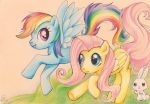 Fluttershy and Rainbow Dash by Sellue