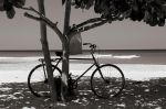 Bike by Talkingdrum