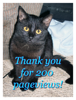200 pageviews by DayDreamsPhotography
