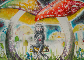 Shrooms by SunStateGalleries