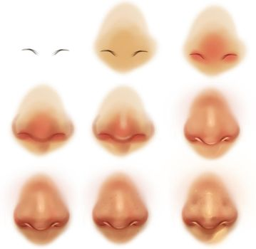 Nose reference tutorial by ryky