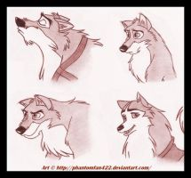 .:: Balto Sketches ::. by Phantomfan422