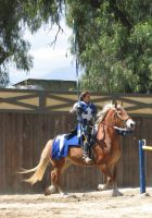 EvenMore Knight Joust Stock 18 by tursiart