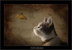Cat's Dreams by Snailmeow
