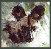 African Wild Dog by ChayaA