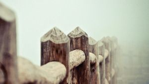 Wooden fence by ecKKKo