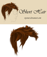 Hair Short by Wyonet
