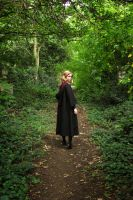 Into the Forbidden Forest by Leonie-Heartilly