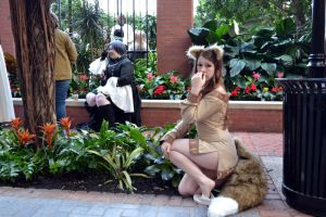katsucon 19-  Spice And Wolf by crunchyspart