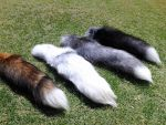 The 4 Fox Tails Side view 1 by MilkyFoxWhiskers