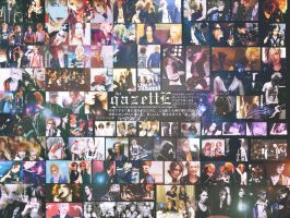 the gazettE is my life by Dens-tsu