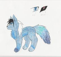 eclipse the fox ref sheet 2012. by moonlightartistry