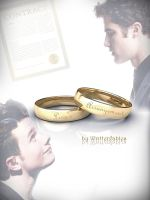 Klaine - Love's Arrangement by DaliaCrissColfer