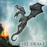 Fire Drake by zememz