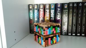 3D Minecraft Bookshelf by ALittleKajira
