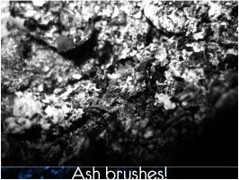 4 Ash brushes by Jiad-one