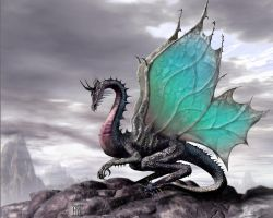 Butterfly-Winged dragon by Silverwing17