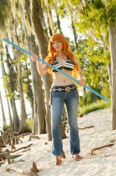 Nami New World, One Piece Cosplay by firecloak