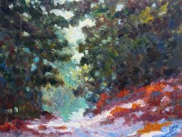 Road in the Pines by litka