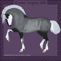 Winter Import 606 by ThatDenver