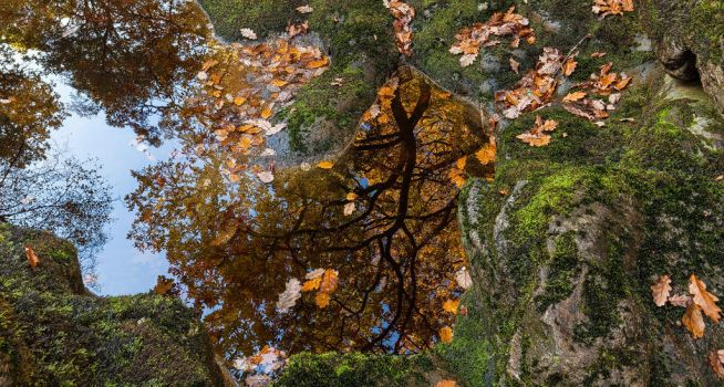 Autumn Reflected by JakeSpain