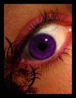 Purple eye by SweetRaven