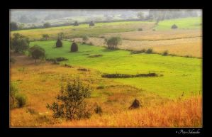 Rural by Phototubby