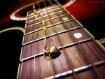 Love Song by tariqui