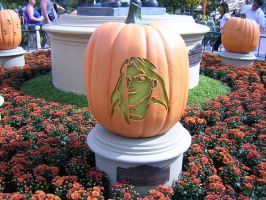 Adventurland Jack o' Lantern by disneyland-stock