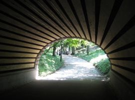 Tunnel Vision by Vamppy