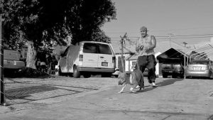 Suicidle Hustlers off Euclid Ave Sd 2014 wP2l by OgJimrock