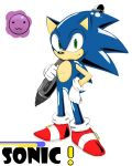 A Real Sonic Artist by Qqwx