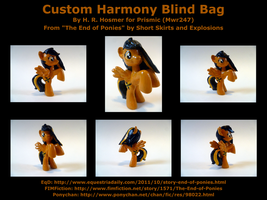 Custom Harmony Blind Bag by Mwr247