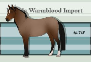Nevada Warmblood 178 by BRls-love-is-MY-Live