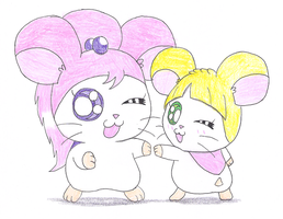 Hamster Behania and Allie by macaustar