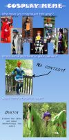 Cosplay Meme '12 by SailorAnime
