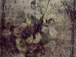 distressed canvas by damerel