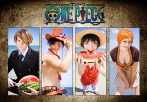 ONE PIECE - Wanted by Hasadosh