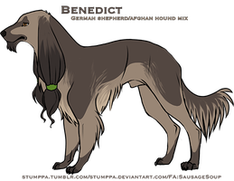Benedict ref by Stumppa
