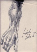 'Life Drawing Forearm Study' by TADASHI-STATION
