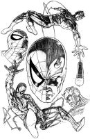 Spider-Man and Daredevil by DeanZachary