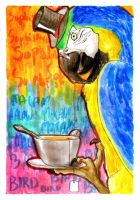 Sophisticated macaw by Stumppa