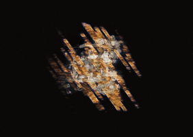 Space gold by Cellusious